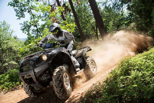 2015 Kawasaki Brute Force 750 4x4i EPS Action 13 High